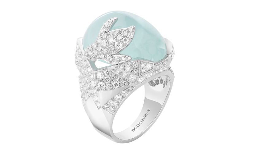 Arctic, the penguin ring